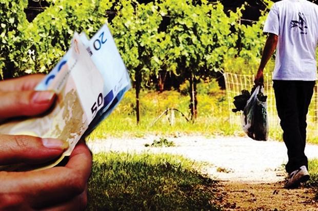 «Πετσοκομμένες» επιδοτήσεις για αγρότες και κτηνοτρόφους στη Μαγνησία