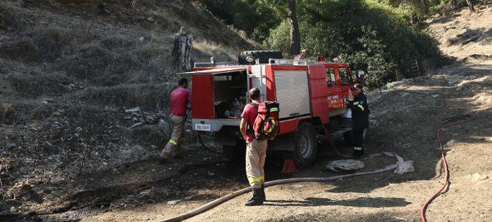 Πιερία: Επιχείρηση της Πυροσβεστικής για ανάσυρση τραυματισμένου κυνηγού από χαράδρα στη Σκοτίνα