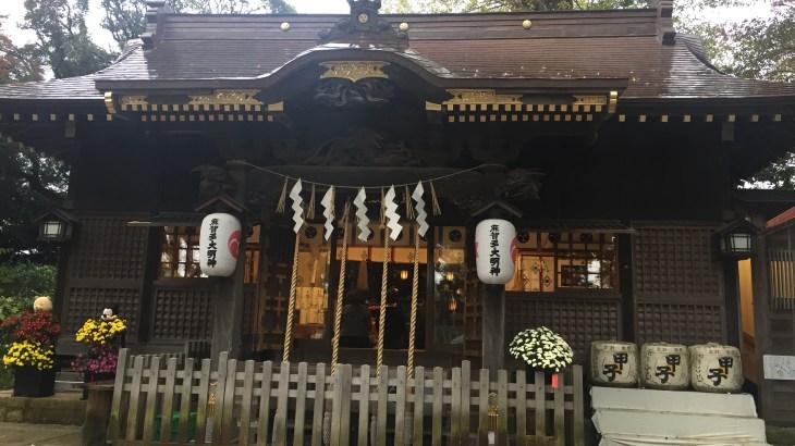 佐倉:麻賀多神社