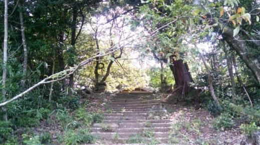 カラス天狗への道、石段