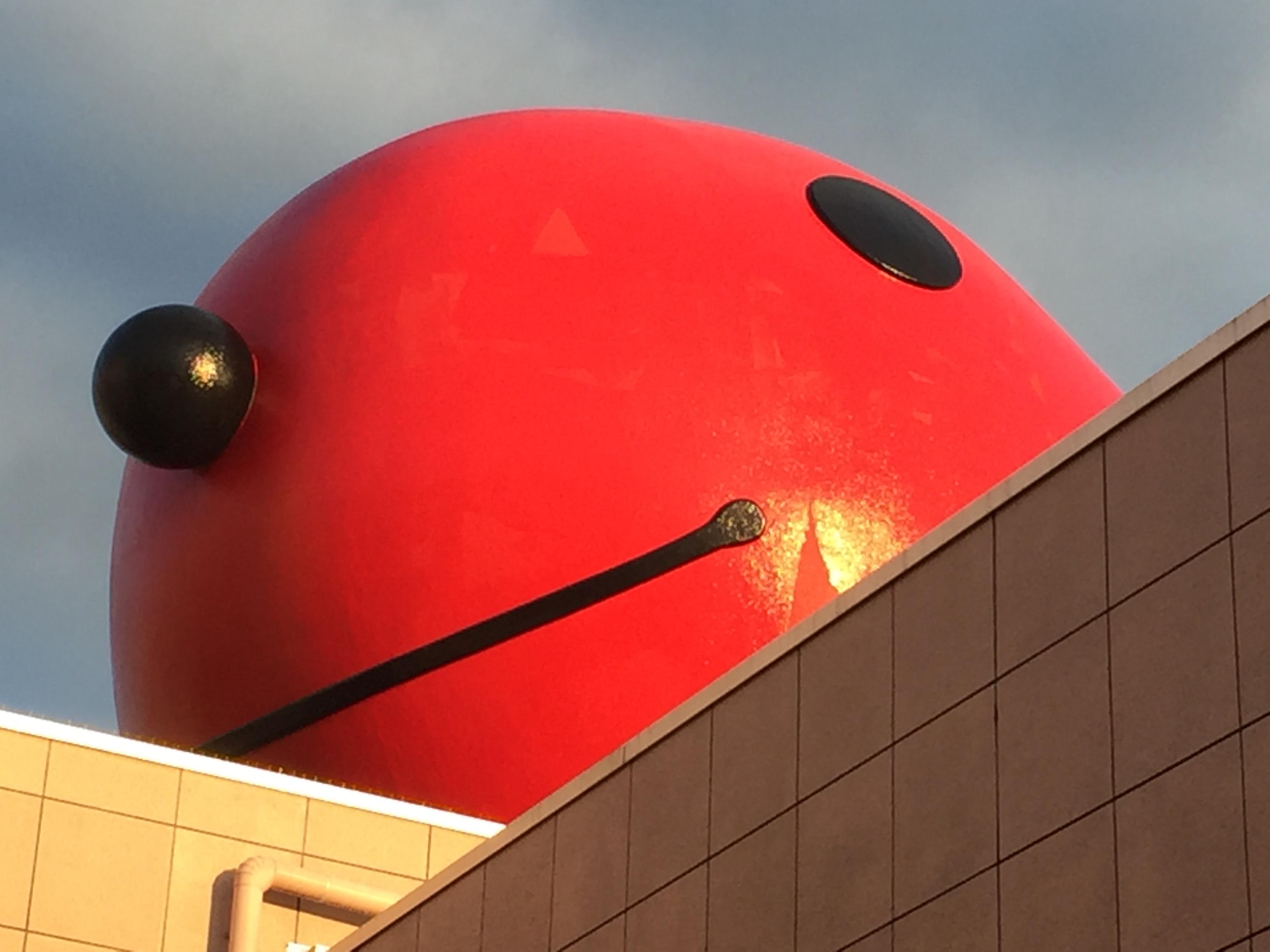 屋根の上のたらピヨちゃん