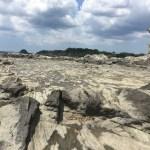 三浦半島*岩礁のみち散策2:劔崎から宮川湾まで