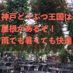 神戸どうぶつ王国は雨が降っても、暑くても大丈夫!