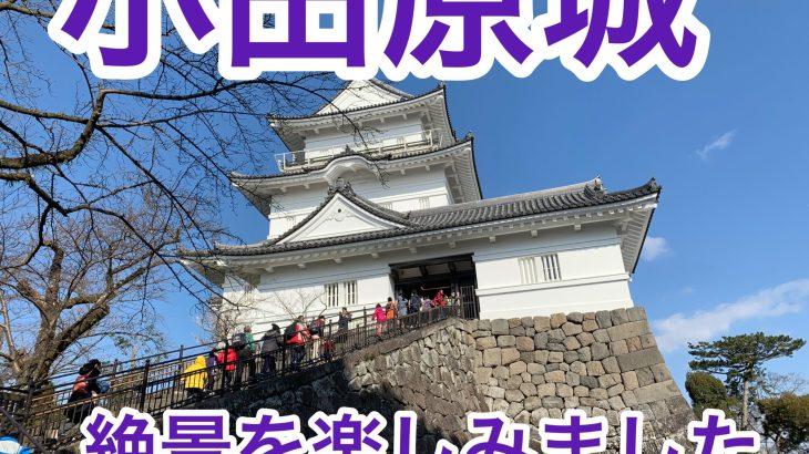 小田原城観光:梅も水仙も〜天守閣はビュースポット