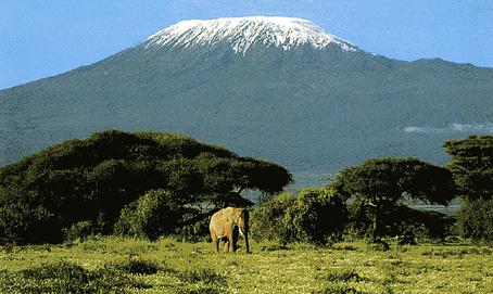 Kilimandscharo-Amboseli-NP-971