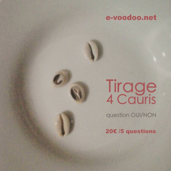 tirage cauris 5 questions