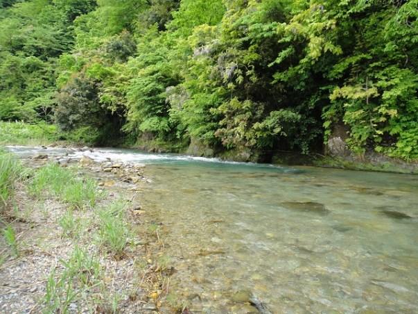 渓流・源流釣りの始め方【ゲーム性とカッコ良さならフライフィッシング】