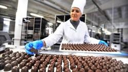 Кондитерська фабрика «Candy Plus»