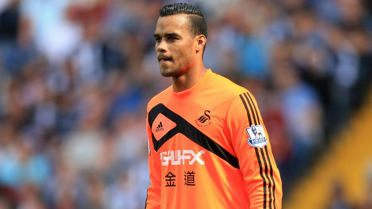 Swanseas Michel Vorm recovering well after successful