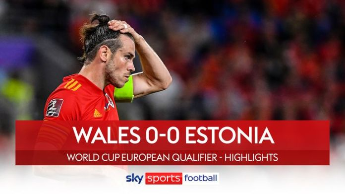 Highlights of the FIFA World Cup European Qualifying group E clash between Wales and Estonia