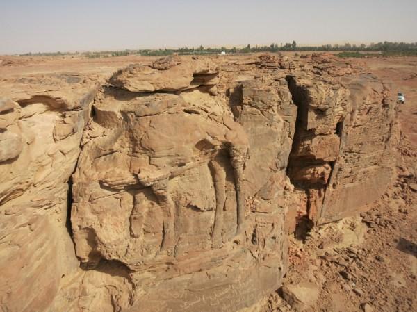 Camellos De Piedra Hace 2.000 Os En El Desierto Arabia Saud Ciencia