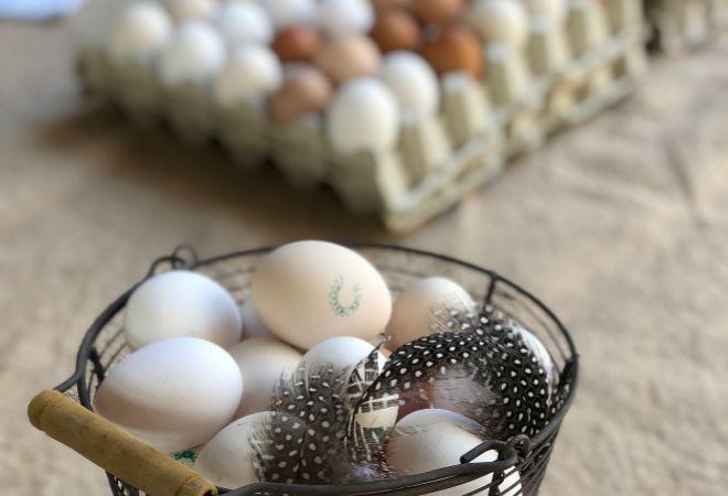 La frescura es una de las características de estos huevos.