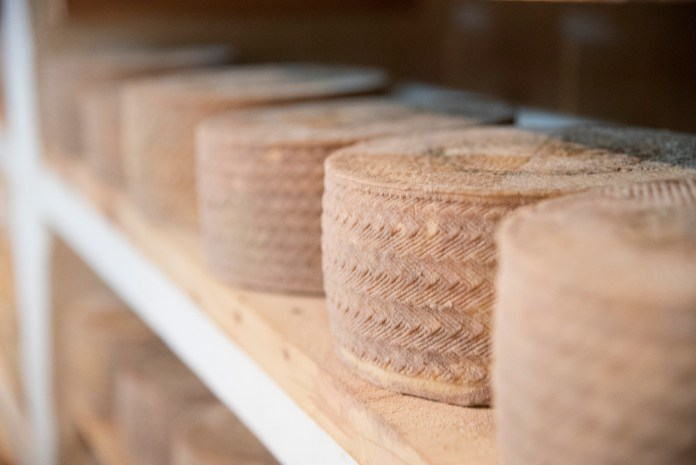 Organic Manchego cheese