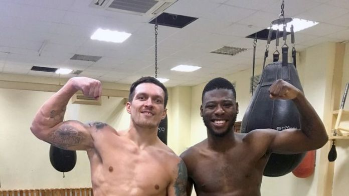 Oleksandr Usyk and Isaac Chamberlain have been sparring in the build-up