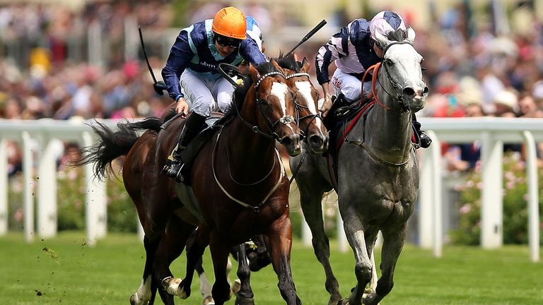 Accidental Agent (left) drops in class at Newmarket