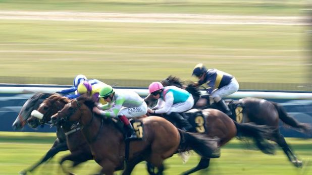 Action from Newmarket