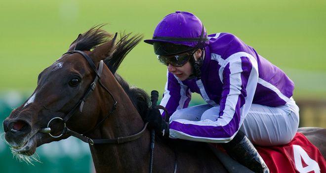 Camelot: Entered for the Great Voltigeur at York