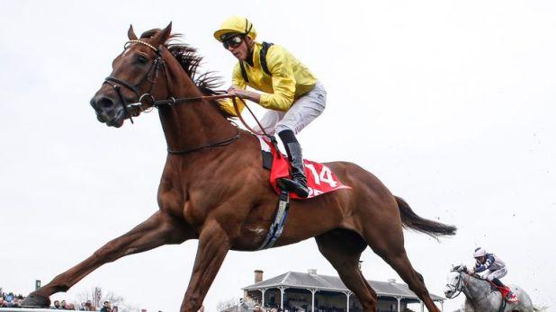 Addeybb - can run well at a big price at Ascot