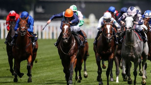 Charles Bishop riding Accidental Agent (orange cap) to victory at Ascot