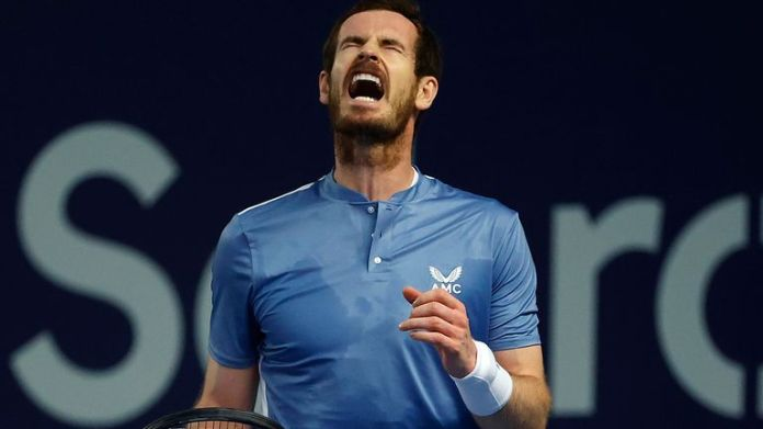 Andy Murray fell to defeat at Schroders Battle of the Brits on Wednesday
