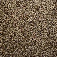 Looptex Mills Irreplaceable Plush Carpet 12 ft wide at