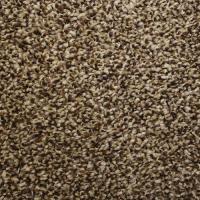 Looptex Mills Irreplaceable Plush Carpet 12 ft wide at ...