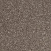 Shaw Stylish Plush Carpet 15 Ft Wide at Menards