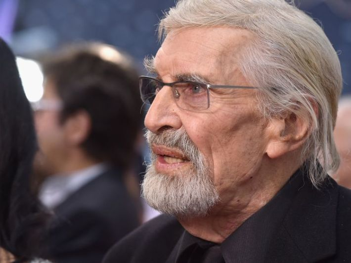 Martin Landau at a film premiere in 2015