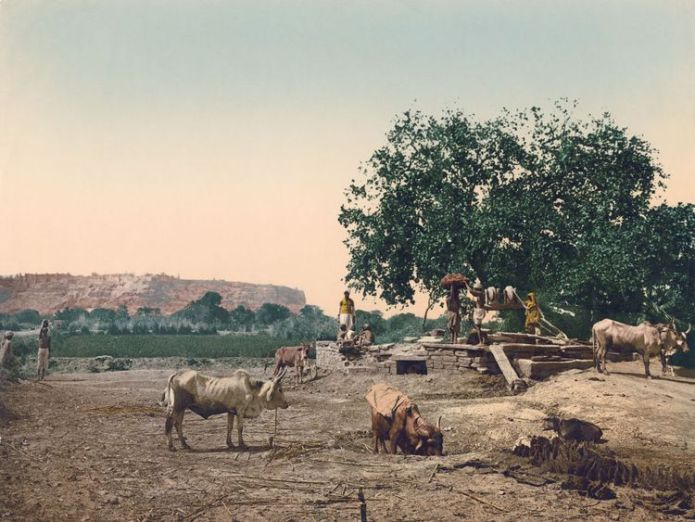 Local people with their cattle at a well in Gwalior Fort near Gwalior, Madhya Pradesh, India, circa 1900. Vintage colour photochrom. (Photo by Photoglob Co./Hulton Archive/Getty Images)  Indian drinking water supplies contaminated by high levels of uranium Indian drinking water supplies contaminated by high levels of uranium skynews india well water 4330780