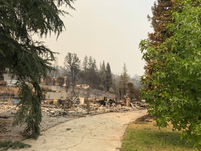 Lots of large trees have survived but lots of homes have not  The eerie aftermath of devastating 'fire tornadoes' skynews california wildfires 4375457