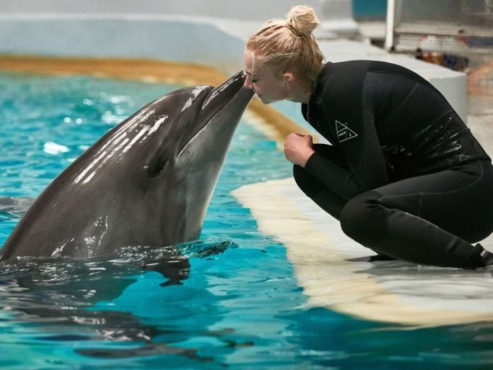 An environmental studies graduate, Ingrid, greets Nina, one of the two dolphins bred in captivity at the dolphinarium, on September 27, 2017 at the Natural Science Museum Complex in Constanta, on the Romanian Black Sea Coast. Between January and the end of September, an ecologist of the Romanian NGO Mare Nostrum, has listed 136 dead dolphins who died accidentally due to the fishing for most of them: a record number since 2012. / AFP PHOTO / Adrian CATU (Photo credit should read ADRIAN CATU/AFP/G  Dolphins teach each other in the wild to 'walk on water' skynews dolphin captive 4404521