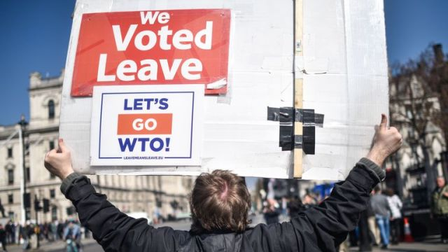 A Leave supporter protesting outside the Houses of Parliament
