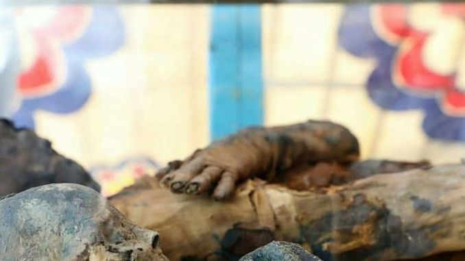 The mummified remains of the owners of the tomb Tutu and T-Cheret Isis