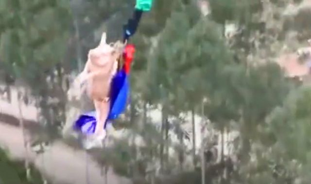 Outrage After Pig Is Pushed Off Bungee Ride In China Theme