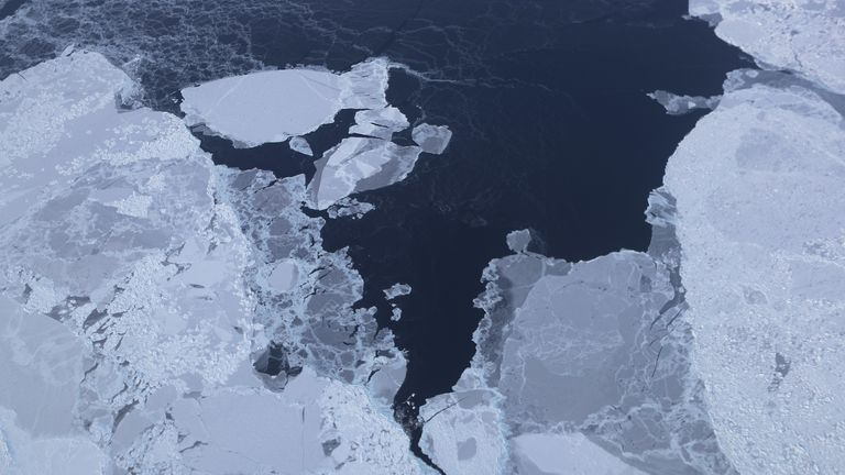 The Arctic is predicted to continue to warm and sea ice reduce