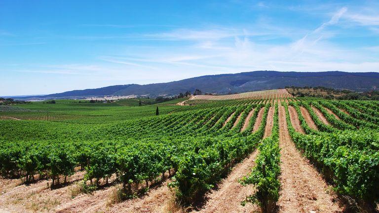 The Alentejo region, Portugal