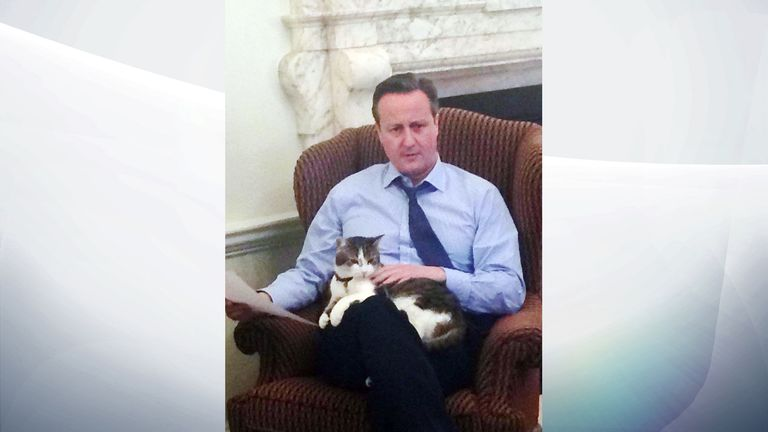 Rumours of a split in Downing Street during the coalition years were put to bed by this picture of David Cameron and Larry