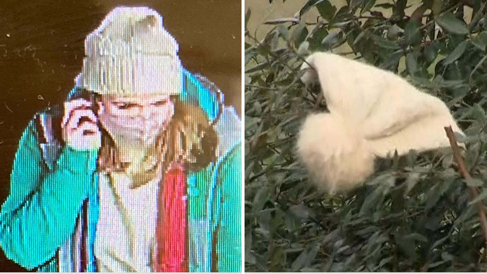 https news sky com story police discover fresh cctv footage containing last sighting of missing sarah everard 12239114