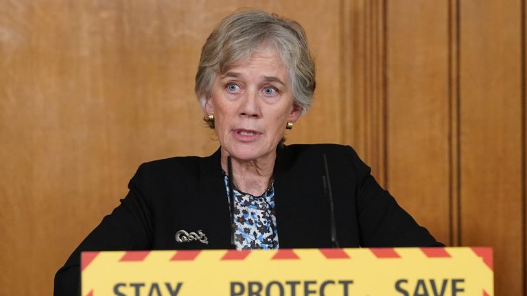 Assistant Scientific Advisor, Professor Dame Angela McLean, during a media briefing on Coronavirus (COVID-19) on Downing Street, London