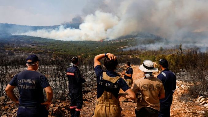 At least 36,000 people were evacuated to safety in Mugla province, officials said