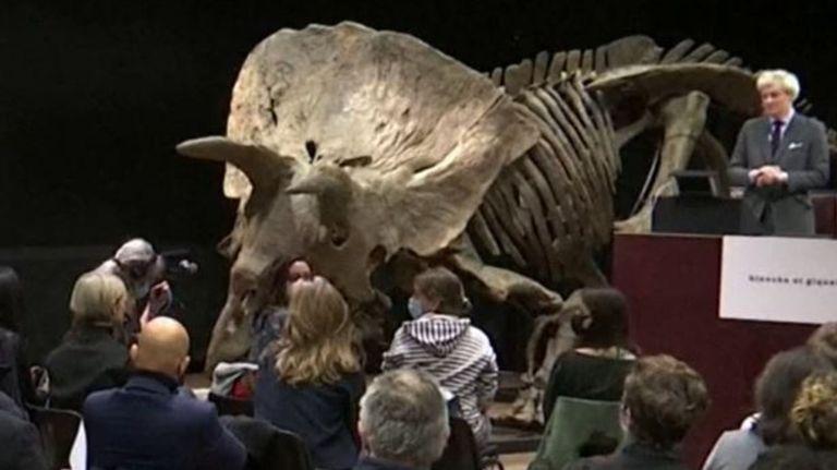 Watch Largest triceratops dinosaur skeleton, often called 'Massive John', sells for £5.6m – Google Australia News