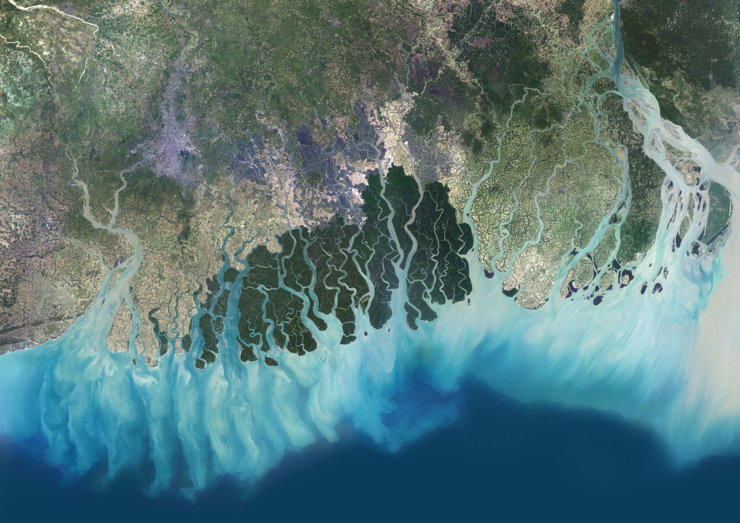 As World S Deltas Sink Rising Seas Are Far From Only