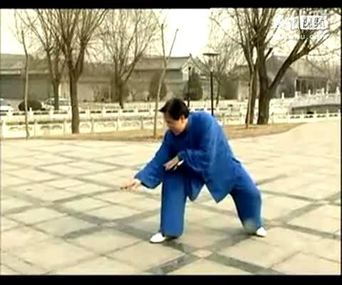 健身氣功五禽戲全套教學高清版-體育視頻-搜狐視頻