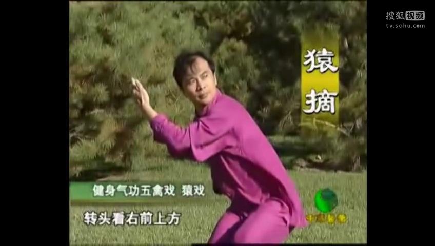《五禽戲》完整教學視頻-音樂視頻-搜狐視頻