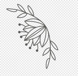Lovebird Plant stem lovebirds white leaf png PNGEgg