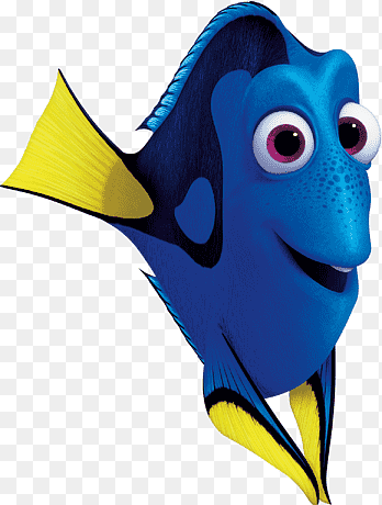 Ikan Nemo Png : Logo,, Nemo,, Carnivoran,, Orange, PNGEgg