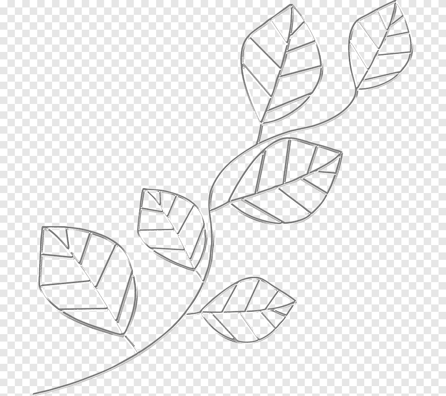 Paper Drawing Line Art Pencil Simple Pencil Drawing Design Angle White Png Pngegg
