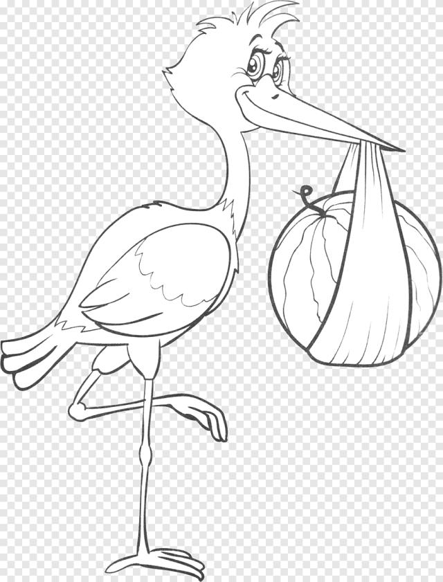 Dessin au trait Oiseau Poulet, cigogne, animaux, poulet png  PNGEgg
