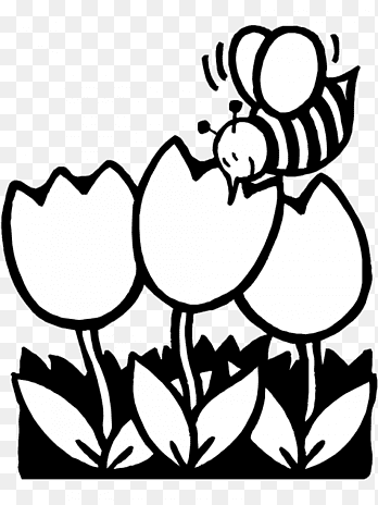 Cartoon Bee Coloring Page Png Images Pngegg