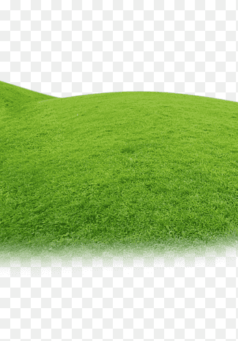 Background Rumput Png : background, rumput, Artificial, Grass, Images, PNGEgg